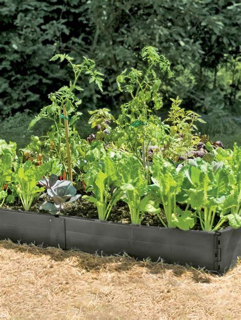 above ground garden beds 17 best ideas about above ground garden on pinterest strawberry bush box garden and