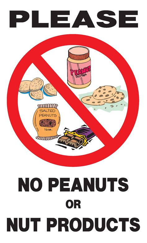 No 1 Nuts parshanim shmuel bet lessons tes teach