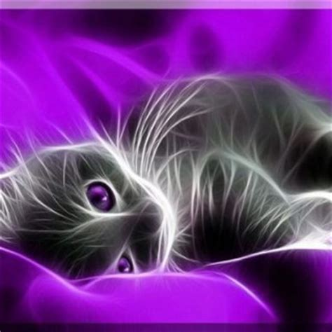 cute themes zedge tag for zedge cute cat wallpapers cute kittens