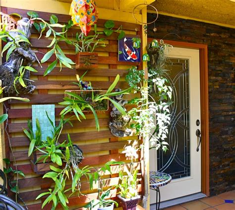 Orchid Planter Ideas by 60 Best Orchids Images On