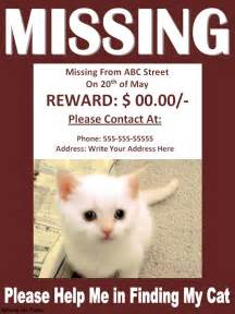 lost cat poster template missing cat poster best word templates