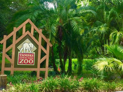 Central Florida Zoo Botanical Gardens Sanford Fl Photos For Central Florida Zoo Botanical Gardens Yelp
