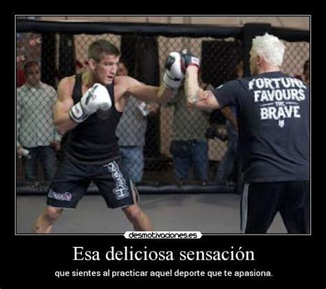 imagenes emotivas de kick boxing im 225 genes y carteles de kickboxing desmotivaciones