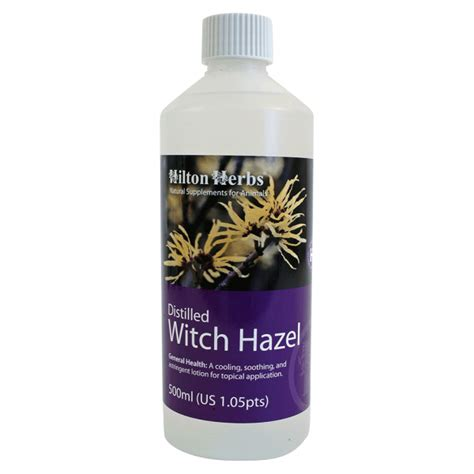 witch hazel for dogs witch hazel extract herbs