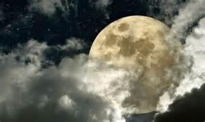 jardiner avec la lune jardinage et calendrier de la lune
