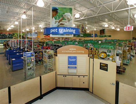 petsmart puppy class local stores pets world