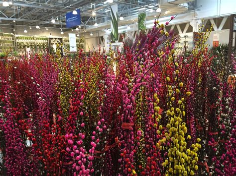new year flowers uk new year shopping at ikea cheras parenting times
