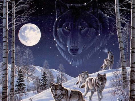 computer wallpaper wolf wallpapers vision of the wolf wallpapers