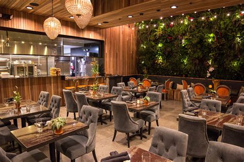 The Patio Group: Restaurant Development & Hospitality ANI