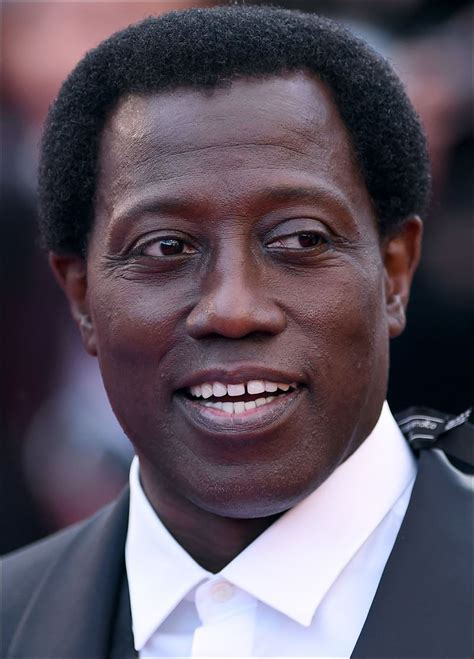 Wesley Snipes Reaches Settlement On Tax Charges by Wesley Snipes Isn T Afraid To Laugh At Himself Toledo Blade