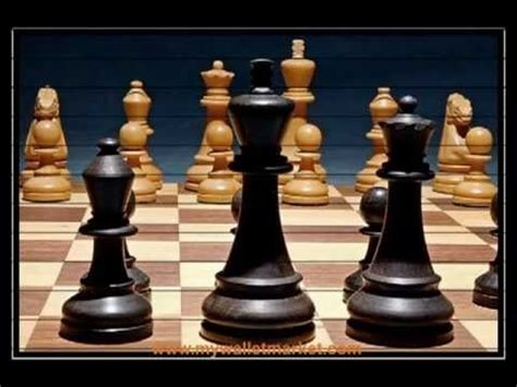 chess this book includes chess for beginners chess for books chess tips chessmaster basic chess strategies for