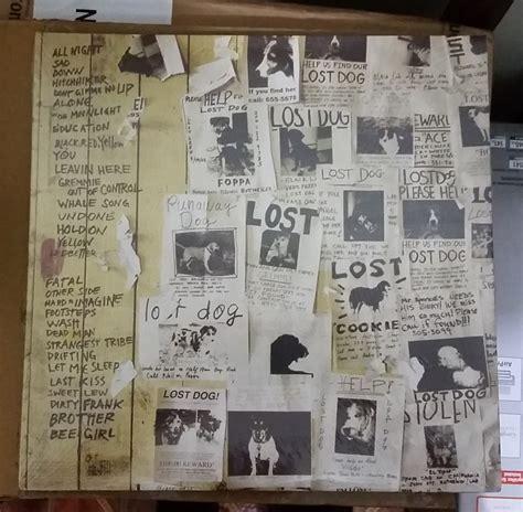 pearl jam lost dogs pearl jam lost dogs vinyl colored vinilo s 399 00 en mercado libre