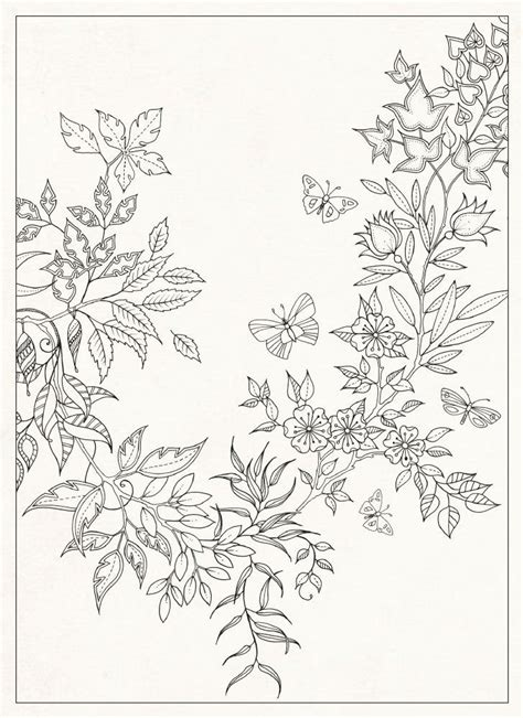 secret garden coloring book free secret garden 20 postcards johanna basford