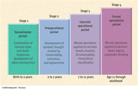 Cognitive Development Theory Jean Piaget Stages Research Paper Sle For Education Majors