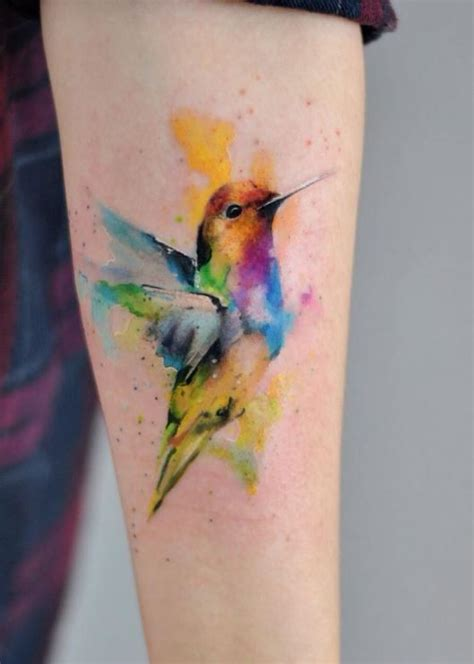 the painted bird tattoo watercolor bird watercolor bird and watercolor