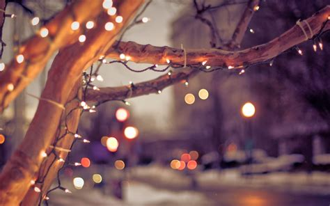 city lights christmas special hi christmas special cute wallpapers dont miss