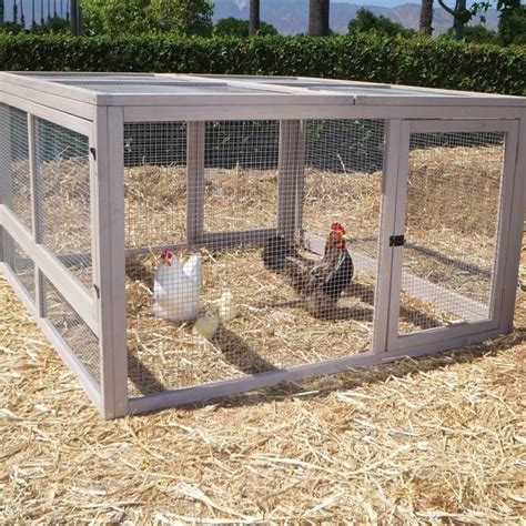 can i have chickens in my backyard 25 best animals images on pinterest chicken coops baby