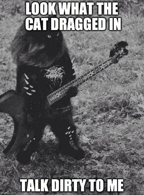 Talk Dirty Meme - black metal cat imgflip