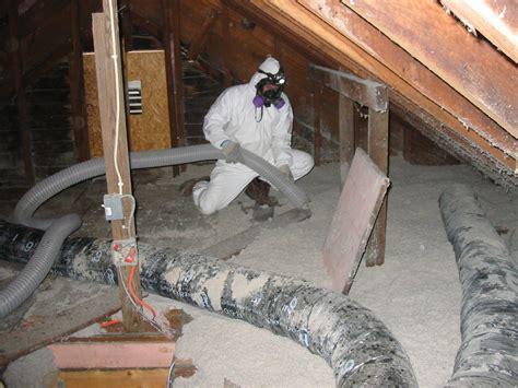michigan mold remediation michigan mold removal asbestos