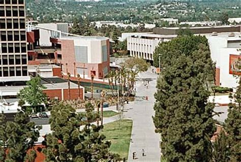 Csuf Mba Tuition by California State Los Angeles Studentsreview