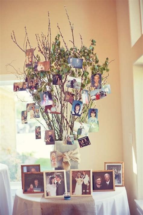 memory tree   great   display photographs
