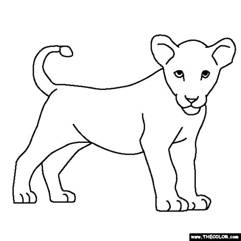 coloring page lion cub tiger cubs coloring pages coloring page of lion cub