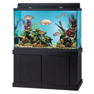 best aquarium black friday deals best 20 150 gallon fish tank ideas on pinterest