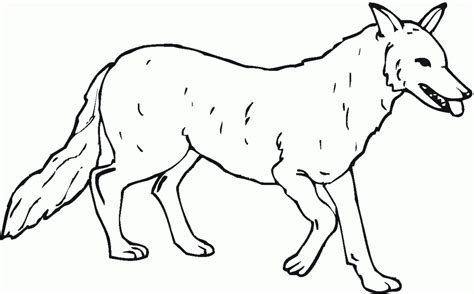 Free Anime Wolf Color Coloring Pages Coloring Pages Wolf