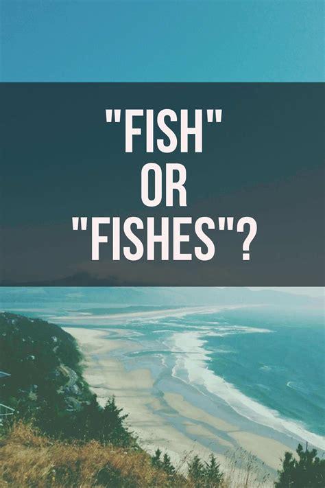 fish  fishes grammar girl