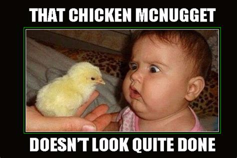 Chicken Meme - funny chicken meme www imgkid com the image kid has it