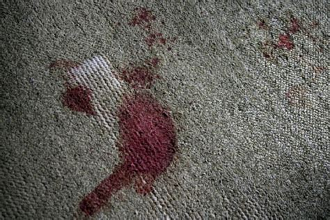 Blood In Carpet by 10 Unsolved Crimes That Were Caught On Video Listverse