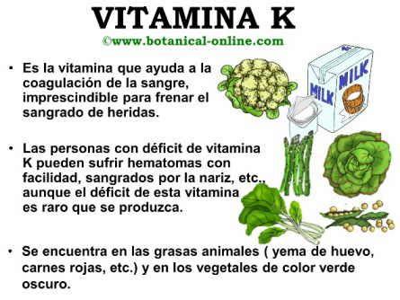 q proteinas tiene el platano propiedades de la vitamina k 241 am