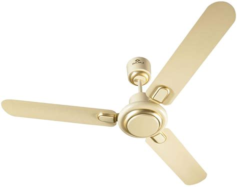 cost to add a ceiling fan bajaj regal gold 600mm ceiling fan bianco available at