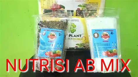 tanaman hidroponik rockwool hidroponik nutrisi ab mix cabai rawit hindoponik nutrisi ab mix hidroponik youtube