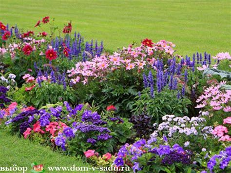 garden flower names list