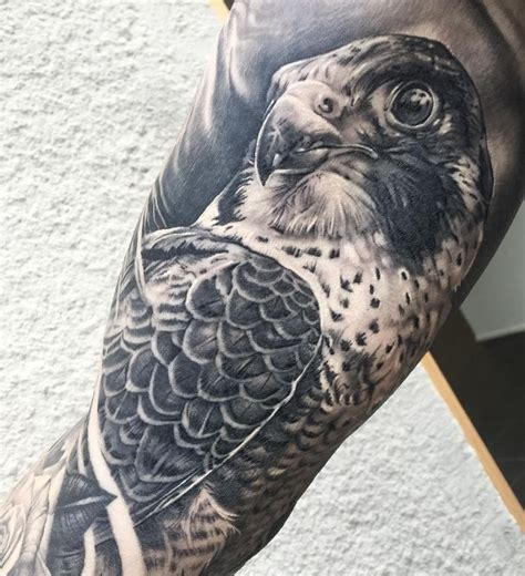 peregrine falcon tattoo best 25 falcon ideas on hawk