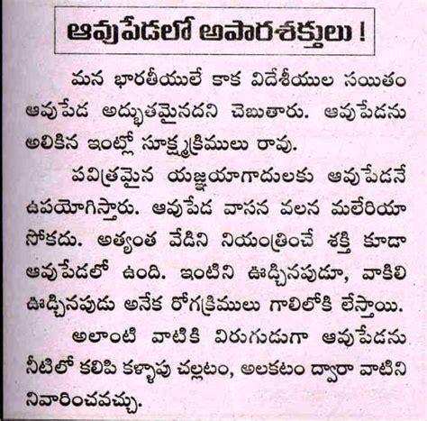 About Cow In Essay by Makar Sankranti Essay In Telugu Language Translator Essay For You