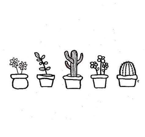 cute little succulents   drawings   Pinterest   Drawings, Simple and Cactus