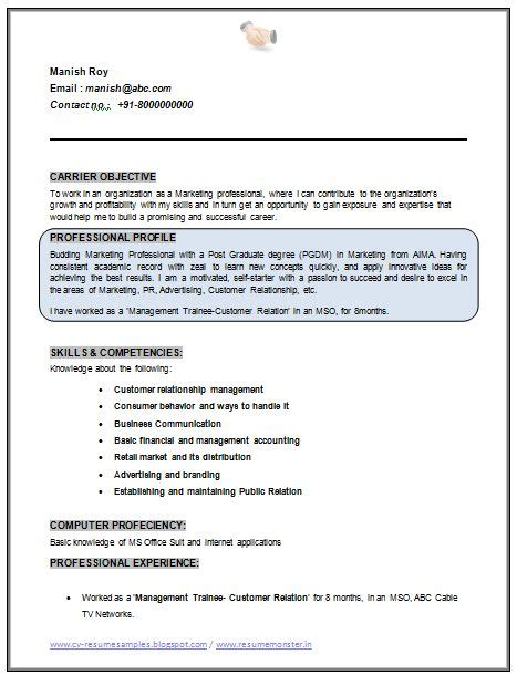 advertising account executive resume advertising account