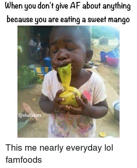 Mango Meme - mango meme 28 images free sle of tiesta tea maui mango