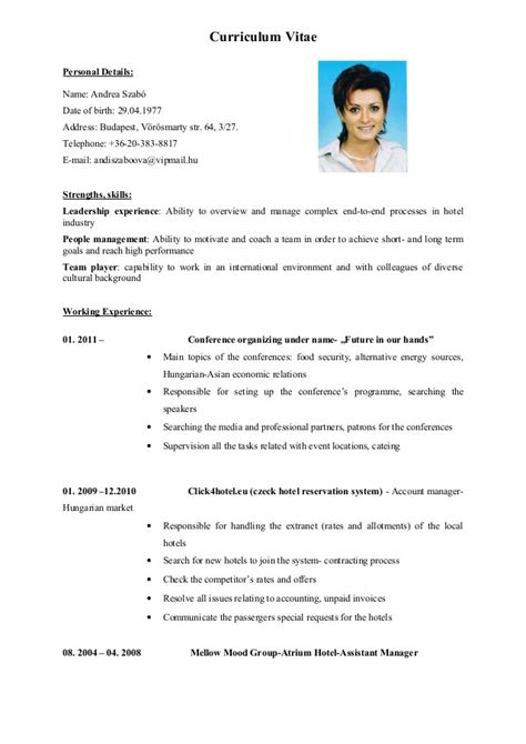 templates for cv in english cv english cvs