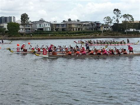 dragon boat racing varsity lakes storms and stingers loom large over dragon boat