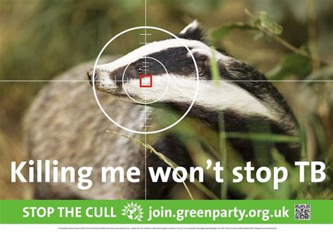 badger cull petition stop the badger cull in west berkshire sign our