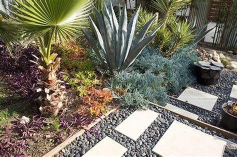 xeriscaped backyard design xeriscape inspiration design sponge