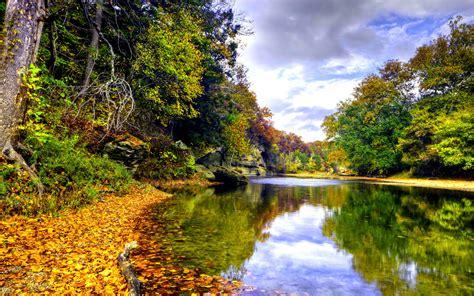 landscape autumn mountain river mirna deciduous forest