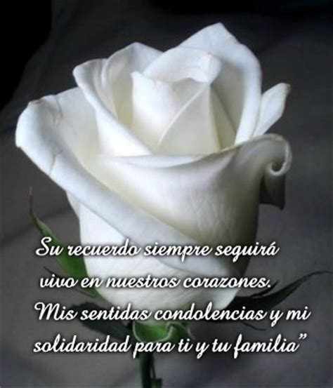 imagenes rosas blancas de luto im 225 genes de flores para luto rosas de duelo y