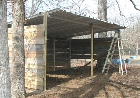 tifany blog   build  cheap loafing shed