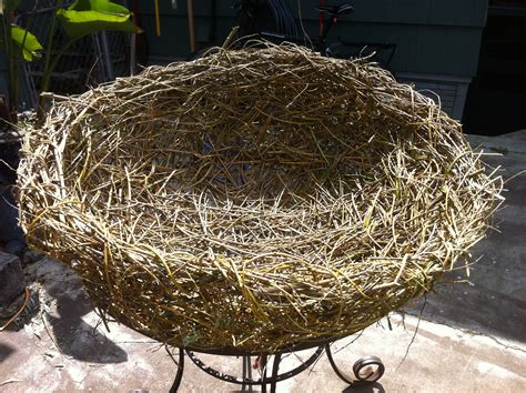 the birdmaker s nest where your treasure will be found safe and sound books katherina s world the nesting project
