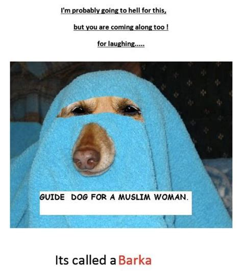muslims dogs muslim guide barka animals dogs muslim and guide