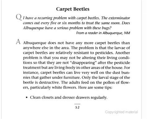 how to get rid of carpet beetles in my bedroom how to get rid of carpet beetle larvae uk zonta floor